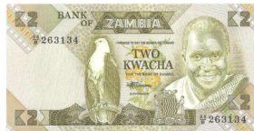 2 квача Замбия